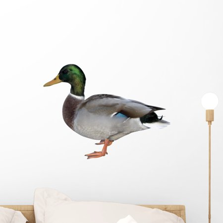 Colourful Duck Wall Mural by Wallmonkeys Peel and Stick Graphic (18 in W x 13 in H) WM202481
