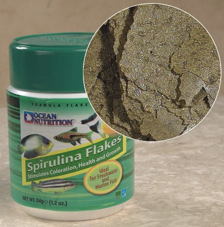Ocean Nutrition Spirulina Flakes 1.2 oz Multi-Colored