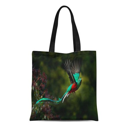 LADDKE Canvas Tote Bag Flying Resplendent Quetzal Pharomachrus Mocinno Savegre in Costa Rica Reusable Shoulder Grocery Shopping Bags