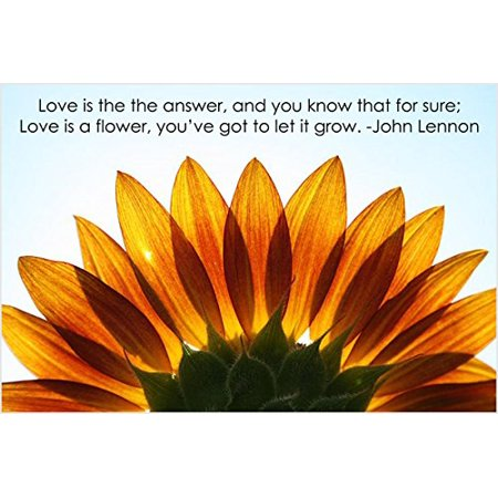 Sunflower Inspirational Poster John Lennon Quote Classic Music 1973 24X36