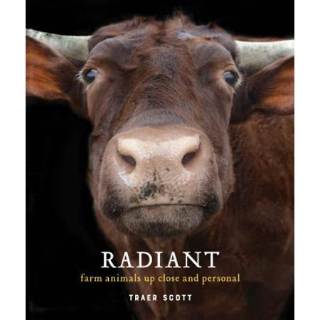 Radiant : Farm Animals Up Close and Personal