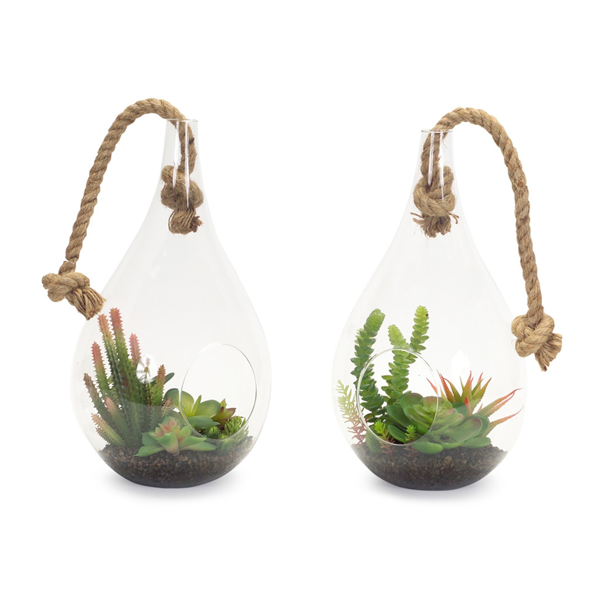 Pack of 2 Clear and Green Hanging Succulent 14.5""
