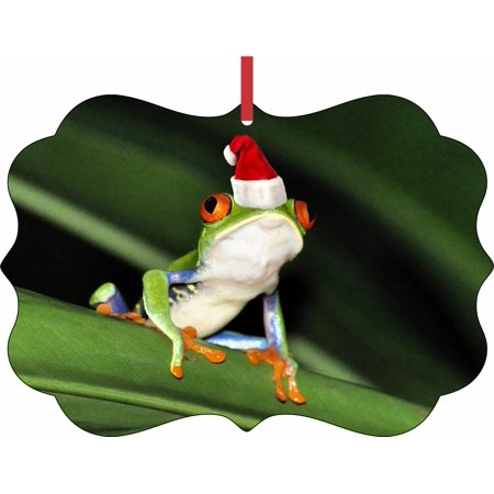 Fraga Christmas Ornament - Tree Frog in a Santa Claus Hat Elegant Aluminum SemiGloss Christmas Ornament Tree Decoration - Unique Modern Novelty Tree Décor Favors
