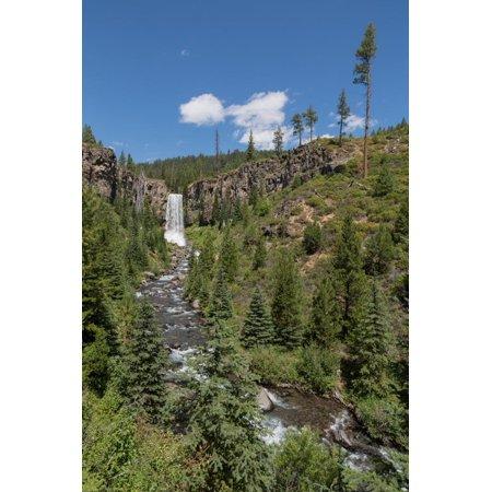 Tumalo Falls, a 97-foot waterfall on Tumalo Creek, in the Cascade Range west of Bend, Oregon, Unite Print Wall Art By Martin Child ()