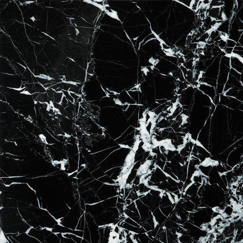 Emser Tile Natural Stone 12'' x 12'' Marble Field Tile in Black / White
