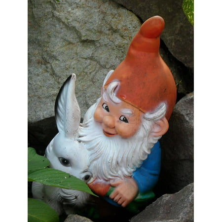 Canvas Print Garden Figurines Dwarf Garden Gnome Funny Fig Stretched Canvas 10 x -