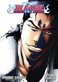 Bleach Box Set 25 (DVD) by Viz Media, LLC.