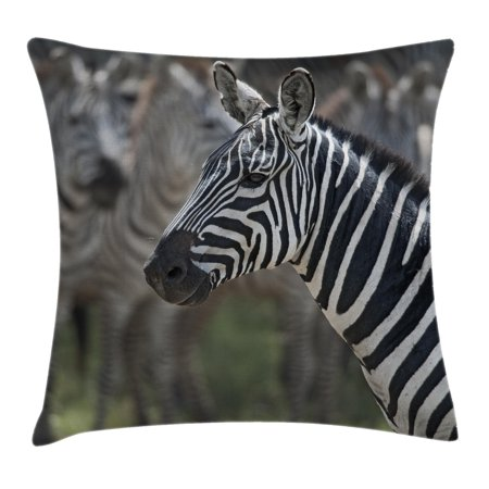 African Throw Pillow Cushion Cover, Zebra in Serengati National Park Safari Animal in Desert Picture, Decorative Square Accent Pillow Case, 18 X 18 Inches, Black White Reseda Green, by Ambesonne](Reseda Park Halloween)