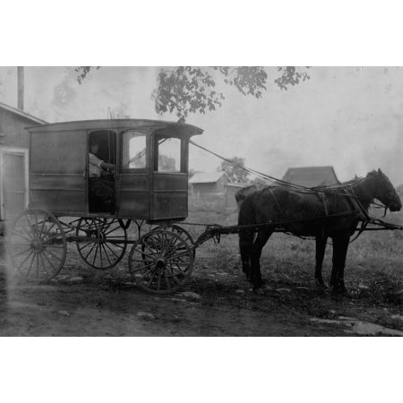 Afternoon Farm (Edgar Kitchen 13 yrs old gets 325 a week working for the Bingham Bros Dairy Drives dairy wagon from 7 AM to noon Works on farm in afternoon seven days)