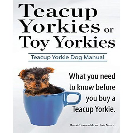 Teacup Yorkies Or Toy Yorkies  Ultimate Teacup Yorkie Dog Manual  What You Need To Know Before You Buy A Teacup Yorkie Or Toy Yorkie
