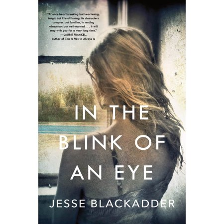 In the Blink of an Eye : A Novel