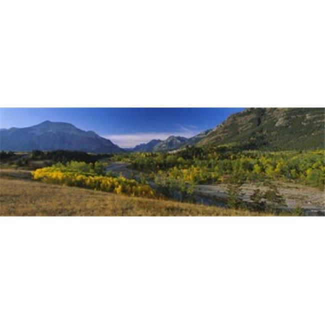 Panoramic Images PPI99440L Trees in a valley  Waterton Lakes National Park  Alberta  Canada Poster Print by Panoramic Images - 36 x 12 - image 1 of 1
