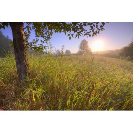 Sunrise On A Dew Covered Grassy Hill North Of Edmonton Alberta PosterPrint