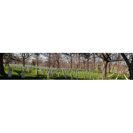 Headstones in a cemetery Arlington National Cemetery Arlington Virginia USA Canvas Art - Panoramic Images (27 x 9)