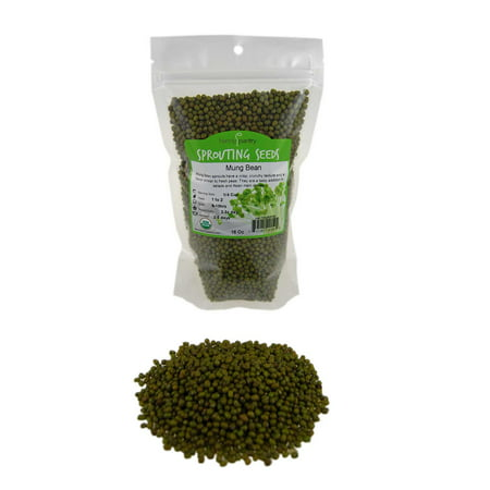 Mung Bean Sprouting Seed- Organic - 1 Lbs- Dried Mung Beans for Sprouts, Garden Planting, Chinese & Asian Cooking, Soup &