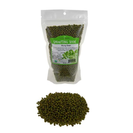 Mung Bean Sprouting Seed- Organic - 1 Lbs- Dried Mung Beans for Sprouts, Garden Planting, Chinese & Asian Cooking, Soup & More.