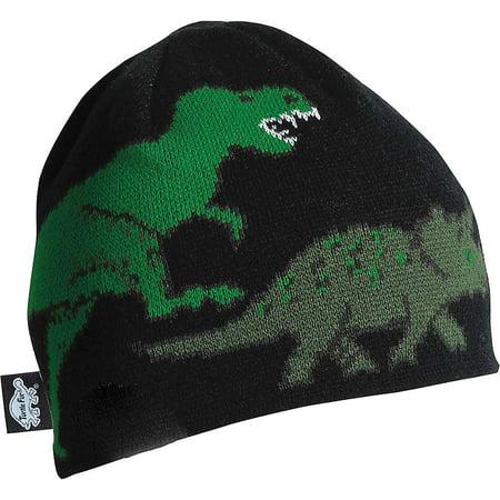 f4d43656c1b5b Turtle Fur Boys  Jurassic Hat - Walmart.com