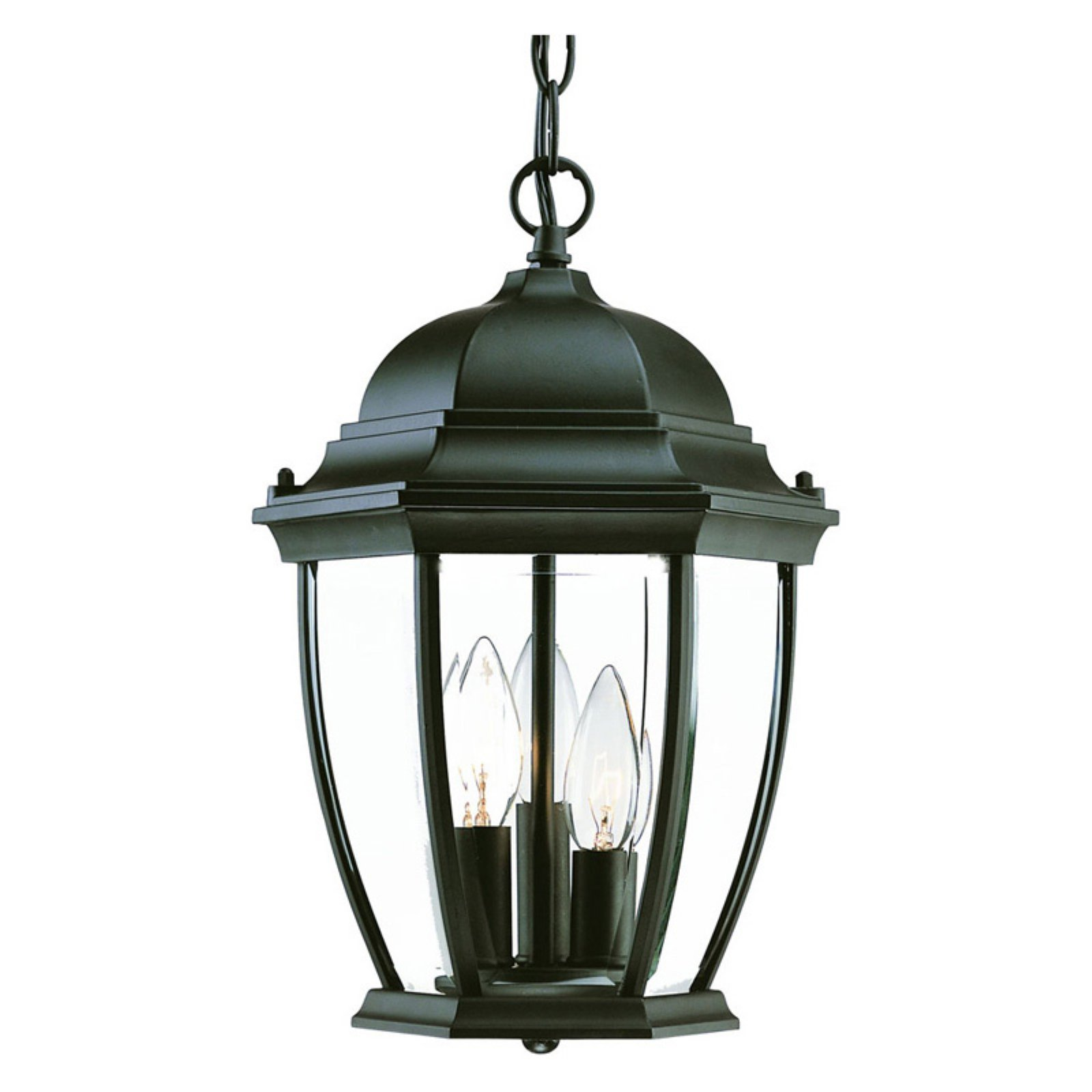 Acclaim Lighting Wexford Outdoor Hanging Lantern Light Fixture