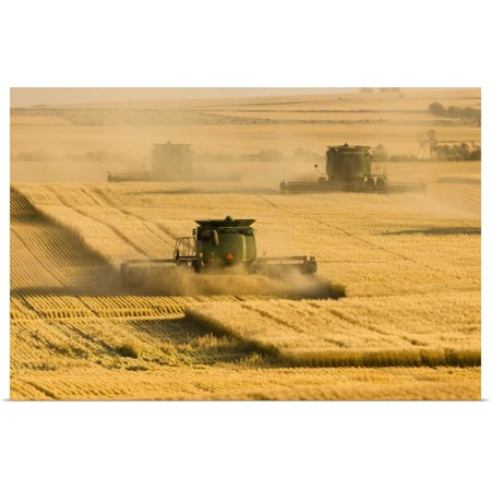 Great BIG Canvas | Rolled Richard Hamilton Smith Poster Print entitled Paplow Harvesting Company custom combines in a wheat field near Ray, (Ricard Poster)