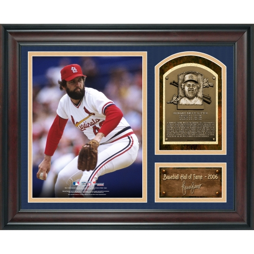 """Bruce Sutter St. Louis Cardinals Fanatics Authentic Framed 15"""" x 17"""" Baseball Hall of Fame Collage with Facsimile Signature - No Size"""