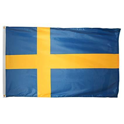 3x5 Foot Swedish Flag Double Stitched Sweden Flag with Brass Grommets | 3 by 5 Foot Premium Indoor Outdoor Polyester Banner Flag ()