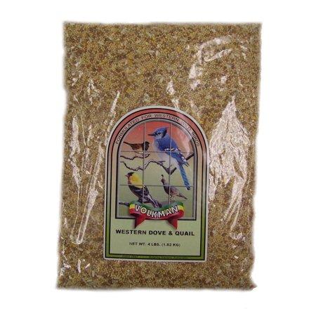 Quail Game Birds (Volkman Seed Wild Bird Western Dove & Quail Healthy Formulated Diet Food 4lbs)