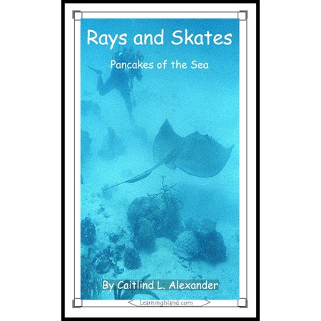 Sea Ray 185 Bowrider - Rays and Skates: Pancakes of the Sea - eBook