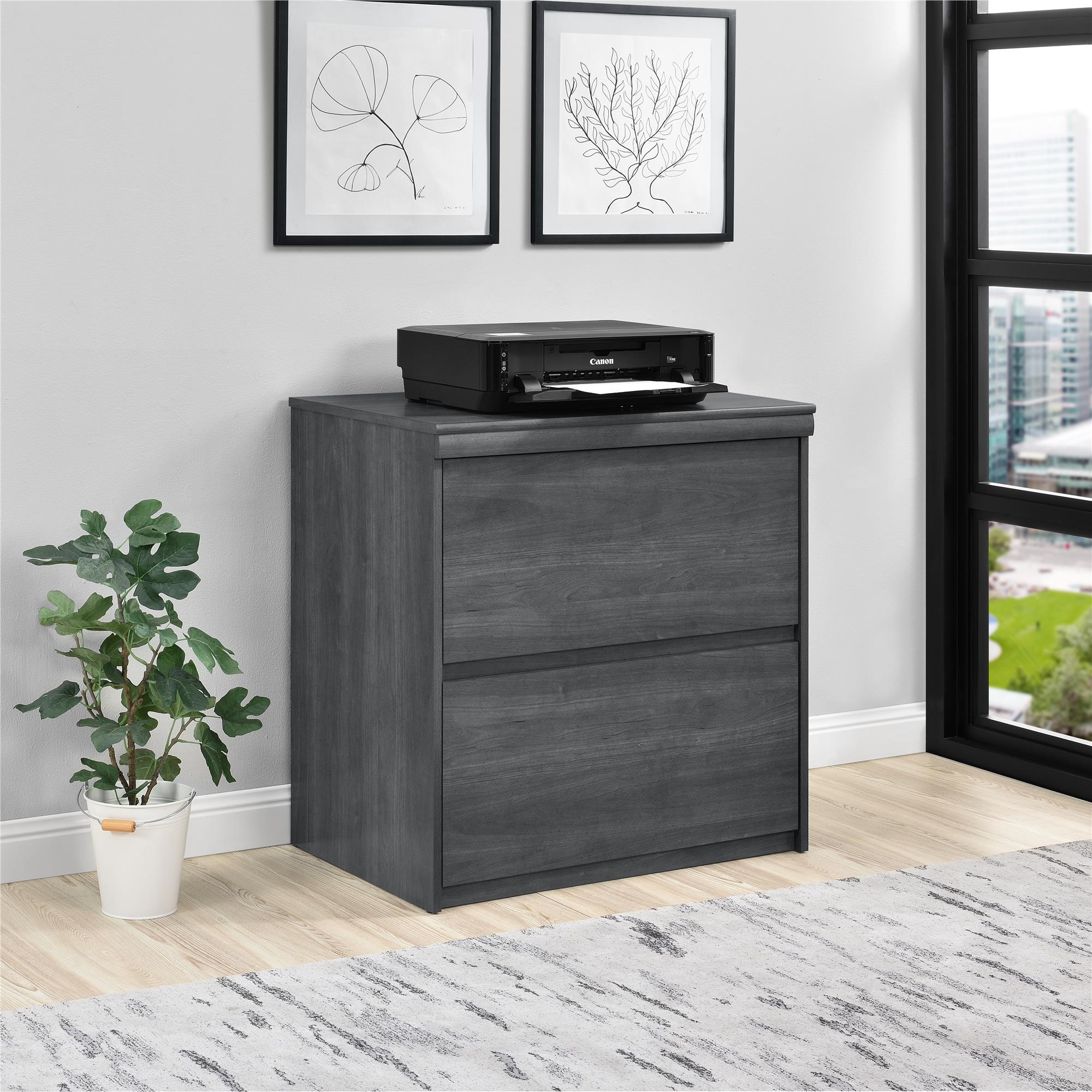 Ameriwood Home Presley Lateral File Cabinet, Multiple Colors