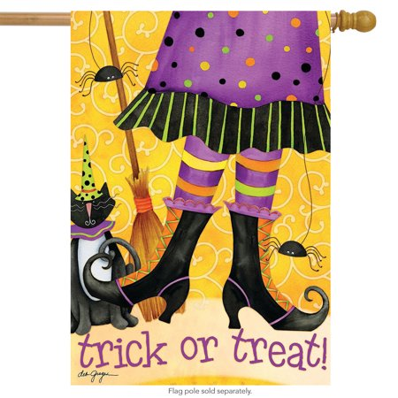trick or treat witch halloween house flag cat broom 28