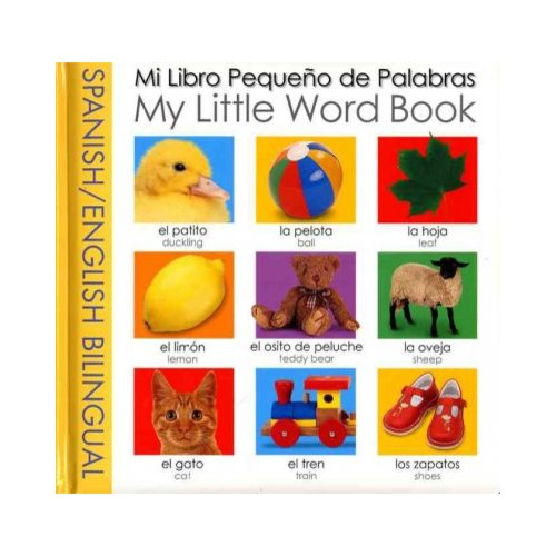 Mi Libro Pequeno de Palabras / My Little Bilingual Word Book