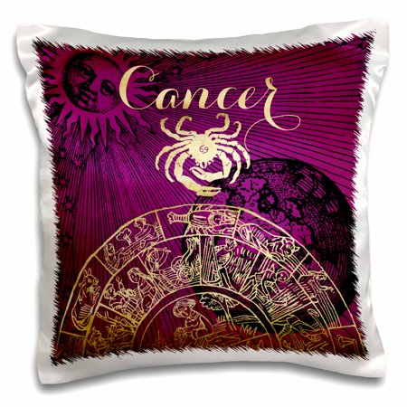 (3dRose Cancer Symbol Astrology Zodiac Sign Horoscope - Pillow Case, 16 by 16-inch)