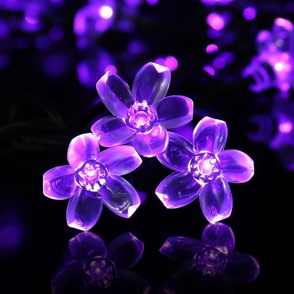 Qedertek Outdoor Waterproof Solar Lights,22.96ft 50 LED Solar Fairy Blossom Flower Decorative String Lights (Purple)