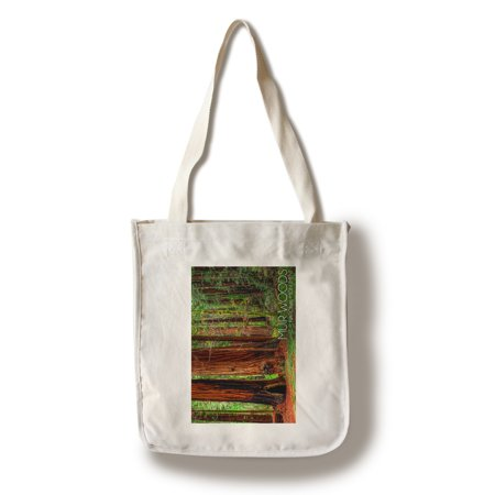 Muir Woods National Monument  California   Forest View  1   Lantern Press Photography  100  Cotton Tote Bag   Reusable