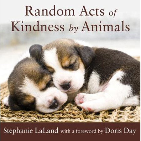 Random Acts of Kindness by Animals (One Random Act Of Kindness A Day)