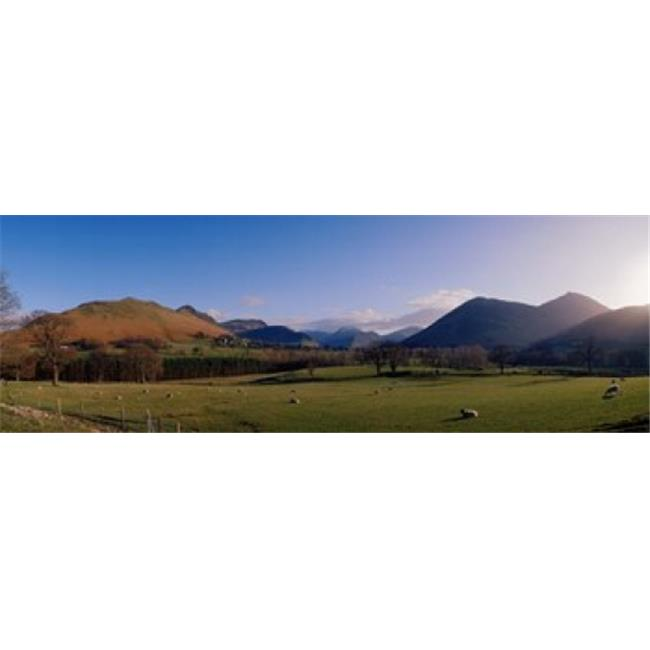 Panoramic Images PPI37330L Valley Northern Lake District Cumbria Newlands England Poster Print by Panoramic Images - 36 x 12 - image 1 de 1