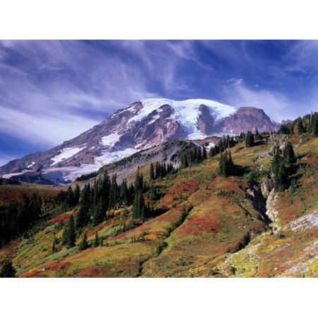 Mt. Rainier from Skyline Trail, Mount Rainier National Park, Washington, USA Print Wall Art By Jamie & Judy -