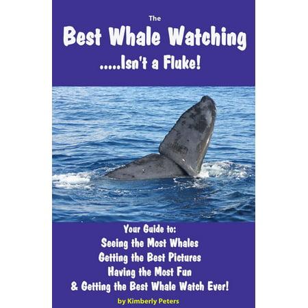 Best Whale Watching - eBook