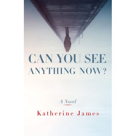 Can You See Anything Now? : A Novel
