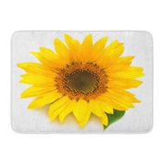 GODPOK Beauty Orange Sun Flower of Sunflower White Seeds and Oil Flat Lay Top View Green Agriculture Blossom Rug Doormat Bath Mat 23.6x15.7 inch
