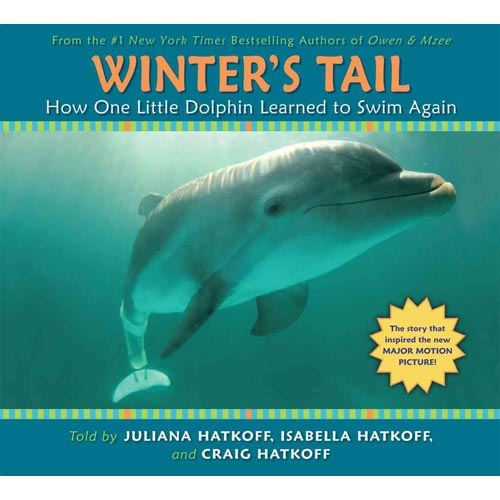 Winter's Tail : How One Little Dolphin Learned to Swim Again: How One Little Dolphin Learned to Swim Again