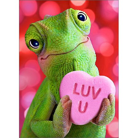 Avanti Press Chameleon Heart Funny / Humorous Valentine's Day Card](Big Valentines Day Cards)