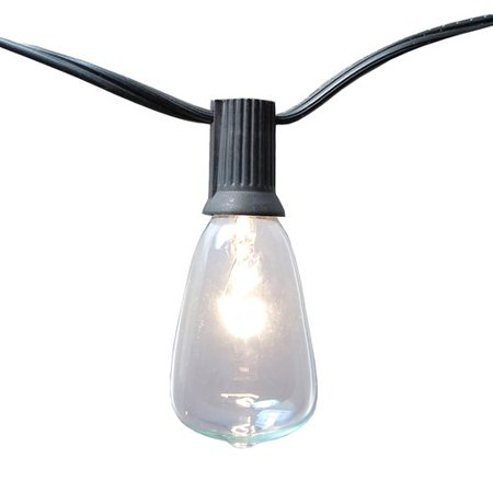 Ten Great String - LumaBase Edison Style String Lights, 10 Lights