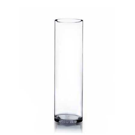 WGV International Cylinder Glass Vase