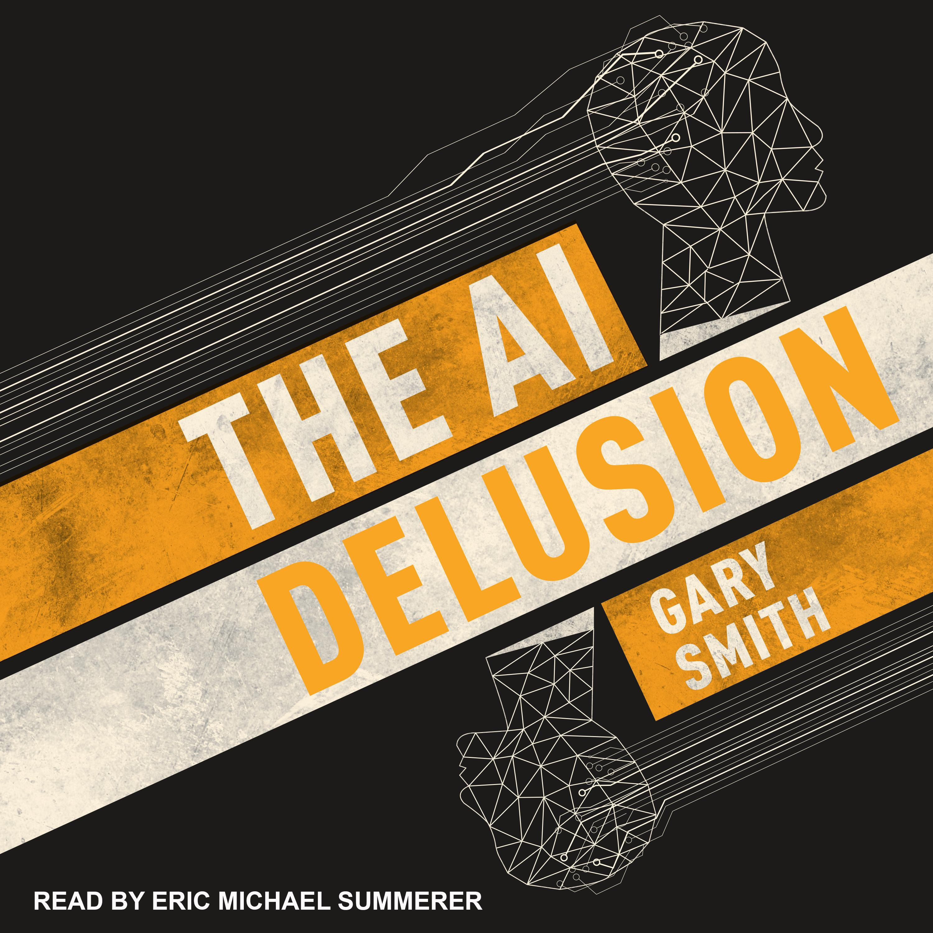 The AI Delusion (Audiobook)