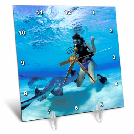 3dRose Cayman Islands. Scuba diving with stingray -CA42 MWT0000 - Michele Westmorland - Desk Clock, 6 by 6-inch