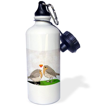 3dRose Robin red breast bird love bokeh - cute romantic birds art mom and chick mothers day or couple gift, Sports Water Bottle, 21oz (M&m Couple)
