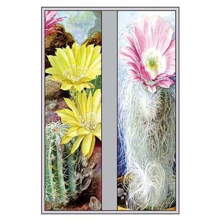 "Flower, Cactus, and Flower-Fine Art Canvas Print (20"" x 30"")"