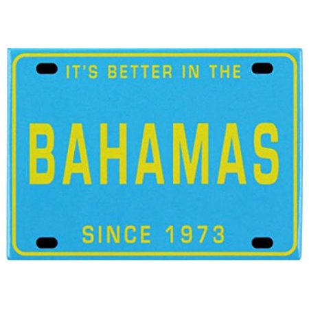 Bahamas License Plate Caribbean Fridge Collector's Souvenir Magnet 2.5 inches X 3.5 inches