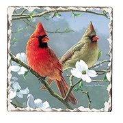 Beautiful Songbirds Tumbled Tile Coasters Set of 4