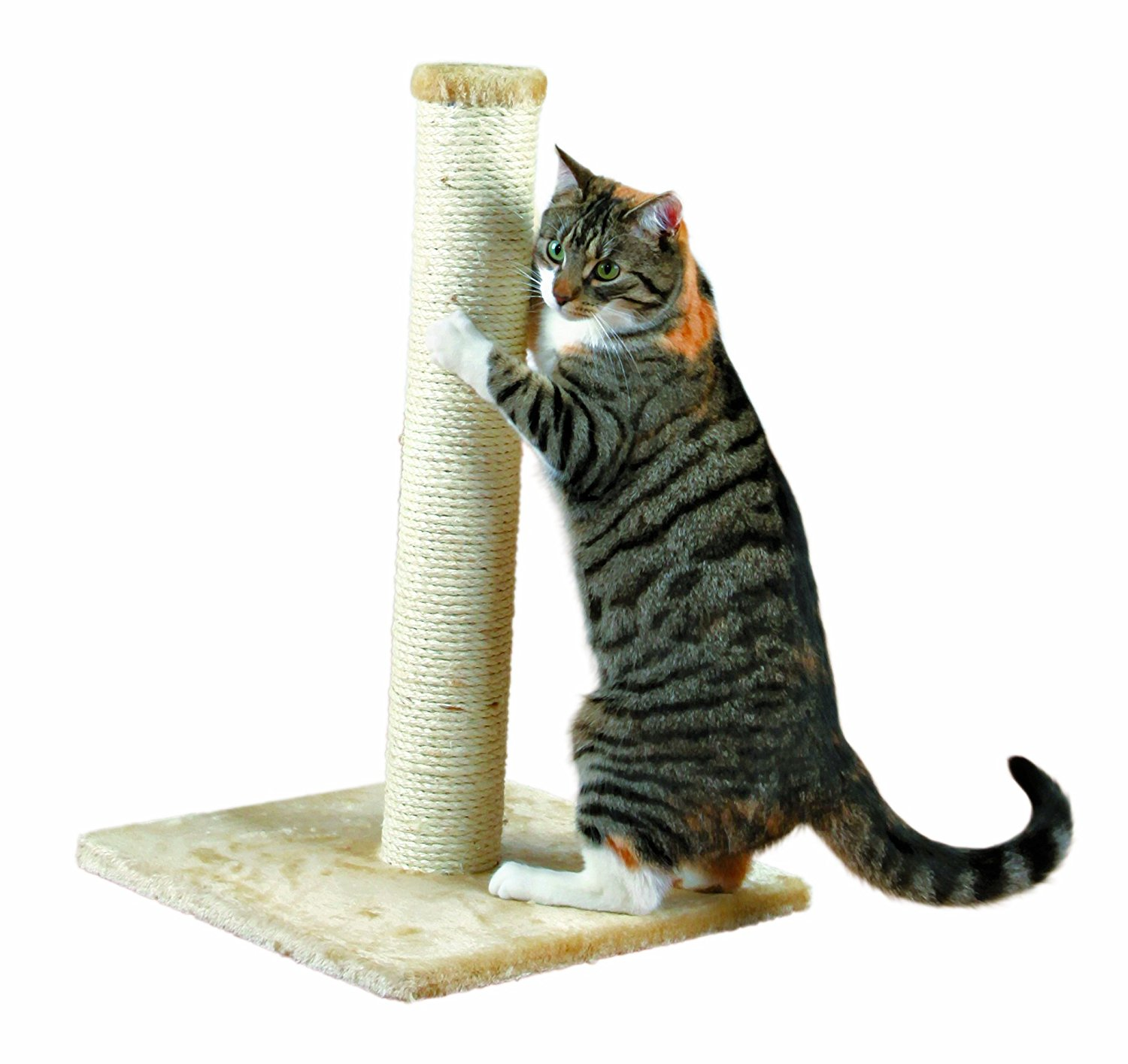 Brand New Parla Scratching Post Beige, High-quality by